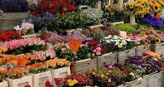 http://prolocosanpietroincasale.it/wp-content/uploads/2015/02/antica-fiera-dei-fiori-milano.jpeg