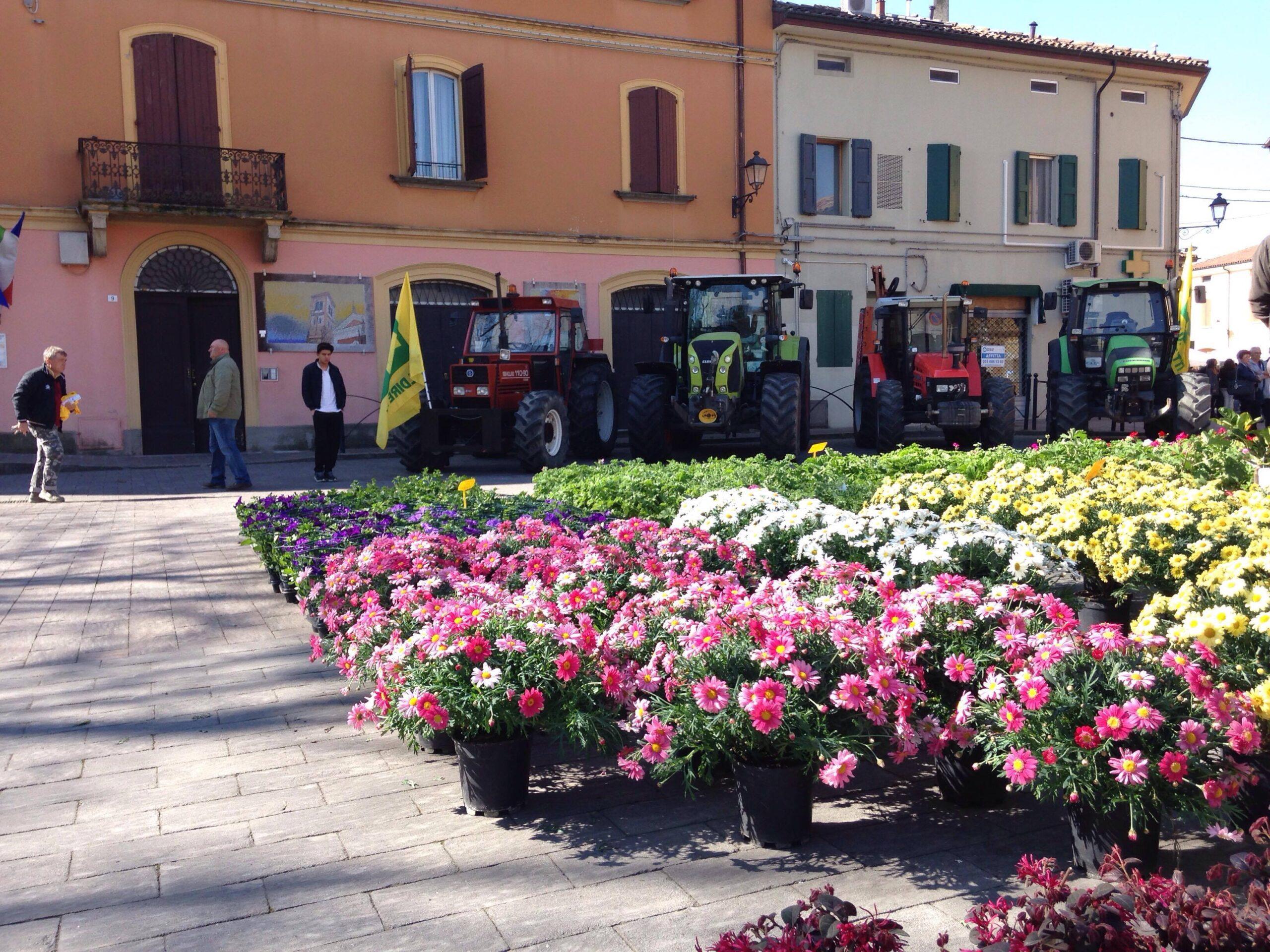 http://prolocosanpietroincasale.it/wp-content/uploads/2021/06/fiori-e-trattori-scaled.jpg